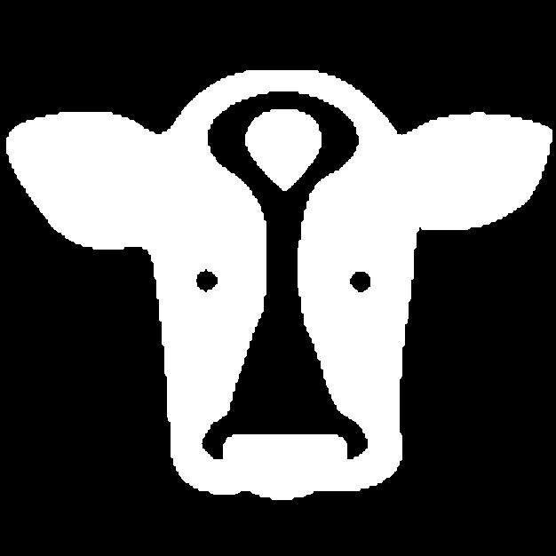 Tiere & Umwelt